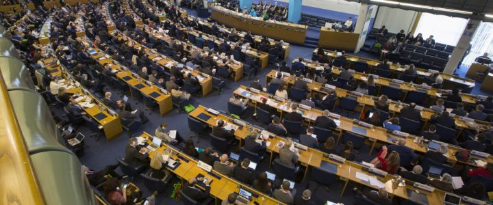 "Who is the ""real"" farmer? Contestation in the Committee on World Food Security"