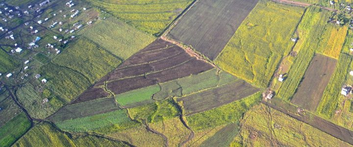 """Land grab"" or global public problem? The conceptual challenges of a research object in vogue"