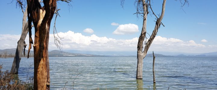 Water Shortages at Water Rich Bodies – Observing the Water-Conflict Nexus at Lake Naivasha